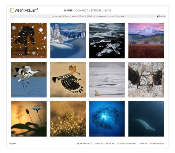 Whytake net  the global community of nature photographers  Inspire Connect Explore